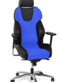 Recaro-office-style-blauw